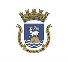 Flag of San Juan  by abbeyz71