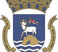 San Juan Coat Of Arms  by abbeyz71