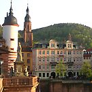 Heidelberg by lotusblossom