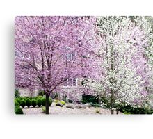 spring blizzard Canvas Print