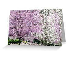spring blizzard Greeting Card