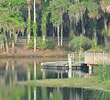 Gemini Springs Park, Debary, Florida by Karl F Davis