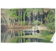 Gemini Springs Park, Debary, Florida Poster