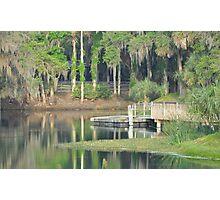 Gemini Springs Park, Debary, Florida Photographic Print