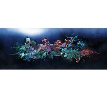 Aquatic Structure Photographic Print
