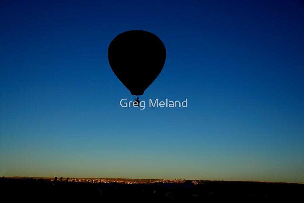 Ballooning at the Albuquerque International Balloon Fiesta, Albuquerque, NM, USA by Greg Meland
