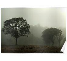 First Fog 2009 Poster