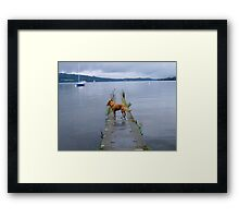 When the boat comes in... Framed Print