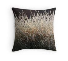 Spinifex at Uluru Throw Pillow