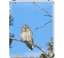 I think we could be friends iPad Case/Skin