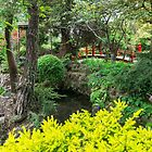 Japanese Garden built in Ireland with Scottish money by TonyCrehan