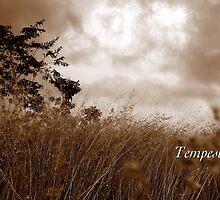 Tempest by JpPhotos
