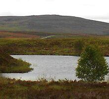 Culloden Moor by lezvee