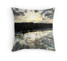 End of the Ice Throw Pillow