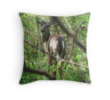 Why Are You Still Following Me? Throw Pillow