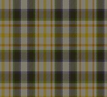 00313 MacLaren Dress Dance Tartan  by Detnecs2013