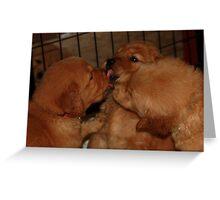 Three way kiss '09 Greeting Card