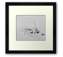 It Was a Long Tough Winter! Framed Print