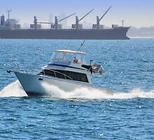 Off to Rottnest -  A View From The Rottnest Express by Colin  Williams Photography