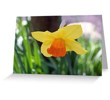 """Daffodil""   Greeting Card"