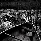 moody pond by charitygrace