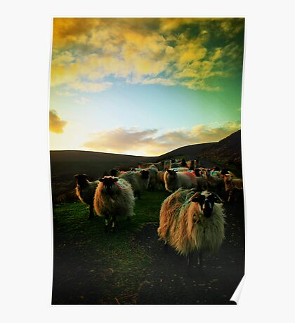 Sundown Achill Poster