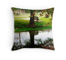 Mirror of Nature Throw Pillow