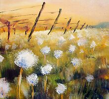Dandelion clocks by Fee Dickson