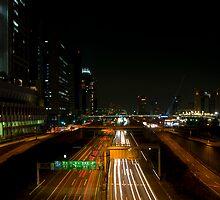 Tokyo Expressway by Richie Wessen