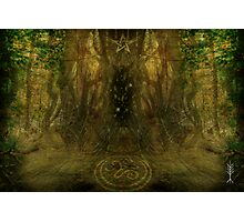 """""""gateway to the oter worlds"""" Photographic Print"""