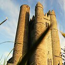 """roundtower lusk No.3 """"bugs view"""" by Finbarr Reilly"""