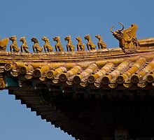 Forbidden City, Beijing - Roof Detail by Tomas Abreu