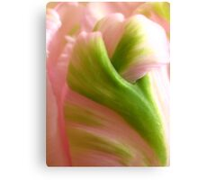 Abstract tulip © Canvas Print