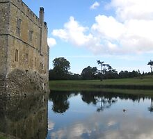 Moat Reflection with Castle by INTERACTION