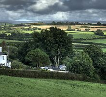 Devon countryside scene by M G  Pettett