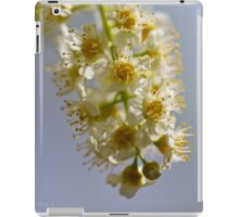 Hanging Blossoms iPad Case/Skin