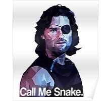 Call me snake. Poster