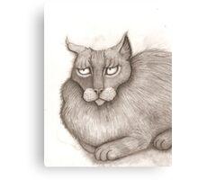 Grey Annoyed Cat Canvas Print