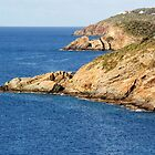 Coastline by William Guilmette