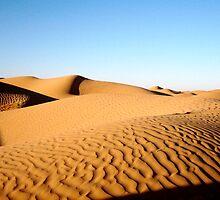 Sahara Desert Dunes by kellinasf