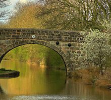 Bridge 20 - Ashby Canal by SimplyScene