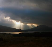 Light  Rays   by Alexander Mcrobbie-Munro