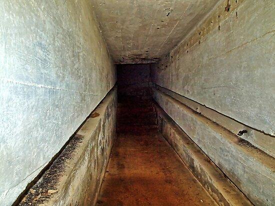 A Tunnel in an Abandoned Nazi Bunker by NeilAlderney