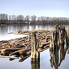 Fraser River by PrairieRose