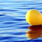 float by shootzpics