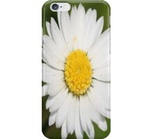 Closeup of a Beautiful Yellow and Wild White Daisy flower iPhone Case/Skin