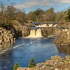 Low Force by Jamie  Green