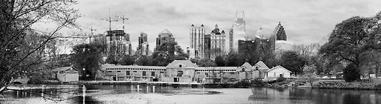 Midtown-Atlanta Skyline - Piedmont Park  by trwphotography