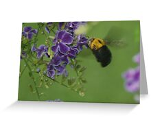 """Bumble Bee in Flight"" Greeting Card"