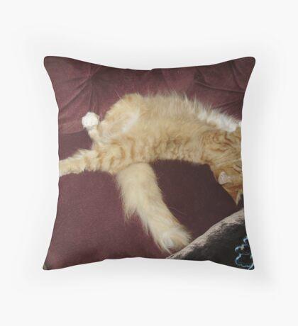 lazy dayz Throw Pillow
